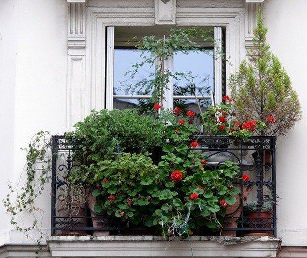 Фотография: Флористика в стиле , Балкон, Декор интерьера, Советы, идеи оформления балкона, как оформить балкон, освещение балкона, декор для балкона, полезные мелочи для балкона – фото на InMyRoom.ru