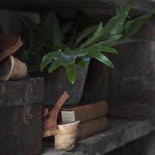 Фото из портфолио Любовь к цветочным акцентам – фотографии дизайна интерьеров на INMYROOM