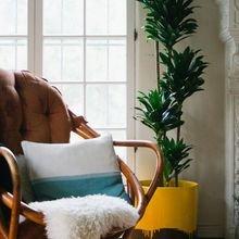 Фотография: Декор в стиле Скандинавский, Декор интерьера, Флористика, Советы – фото на InMyRoom.ru