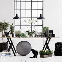 Фотография: Флористика в стиле , Декор интерьера, Декор дома – фото на InMyRoom.ru