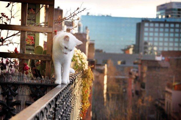 Фотография:  в стиле , Советы, Виктория Тарасова – фото на InMyRoom.ru