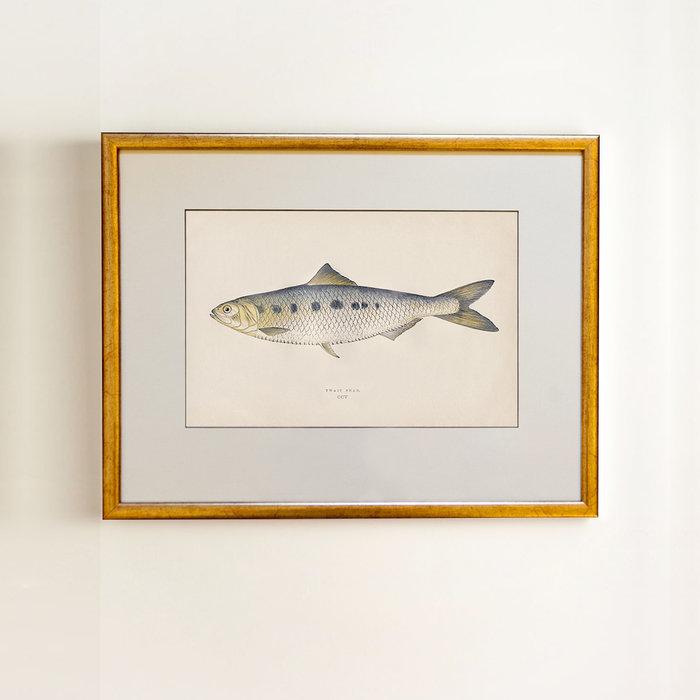 Golden fish 0.2