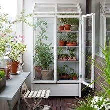 Фотография: Балкон в стиле Современный, Эко, Советы, Зеленый, Оксана Шабалина, овощи на балконе, сад пряных трав на балконе, вертикальное озеленение, что выращивать в тени, огород на балконе, мини-огород на балконе – фото на InMyRoom.ru