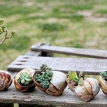 Фотография: Флористика в стиле , Стиль жизни – фото на InMyRoom.ru