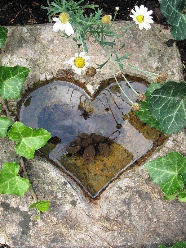 Фотография: Ландшафт в стиле , DIY, Советы, Зеленый, Дом и дача, пруд своими руками, пруд из пленки, готовые емкости для прудов, водные растения, как ухаживать за прудом, как оформить берега пруда – фото на InMyRoom.ru