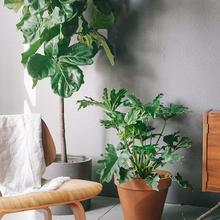 Фотография: Мебель и свет в стиле Лофт, Скандинавский, Декор интерьера, DIY, Декор – фото на InMyRoom.ru