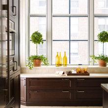 Фотография: Кухня и столовая в стиле Классический, Современный, Декор интерьера, Декор дома – фото на InMyRoom.ru