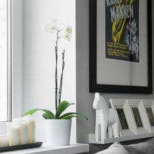 Фотография: Декор в стиле Лофт, Современный, Малогабаритная квартира, Квартира, Дома и квартиры, IKEA, Проект недели, Максим Тихонов, Ольга Мелекесцева – фото на InMyRoom.ru