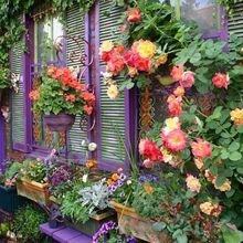 Фотография: Флористика в стиле , Декор интерьера, Декор дома, Дача – фото на InMyRoom.ru