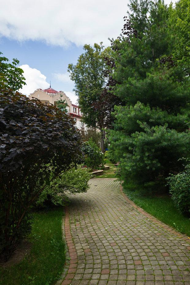 Фотография: Ландшафт в стиле , Советы, садовая дорожка, как обустроить дачный участок, Derevo Park, Дорожки в саду – фото на INMYROOM