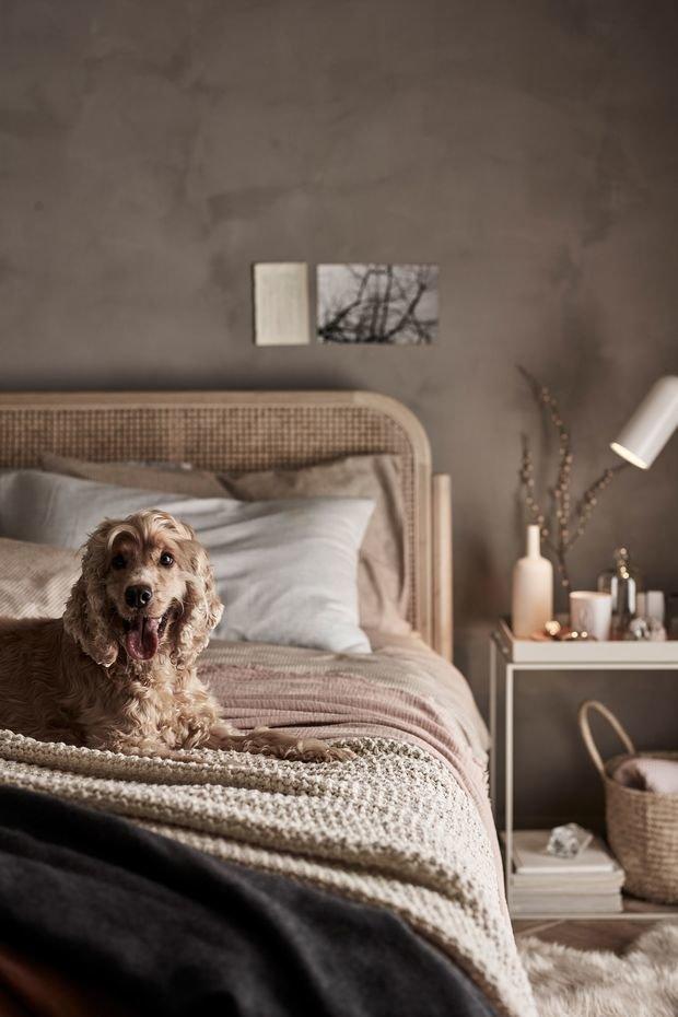 Фотография: Спальня в стиле Эко, Декор интерьера, модная палитра в интерьере, осенний декор интерьера, квартира в пастельных тонах – фото на INMYROOM