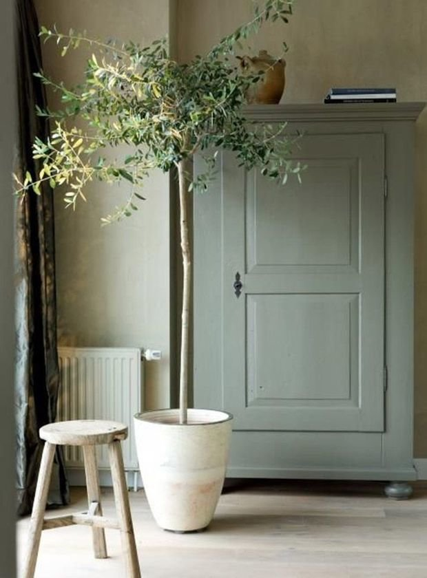 Фотография: Гостиная в стиле Прованс и Кантри, Атмосфера в доме – фото на INMYROOM