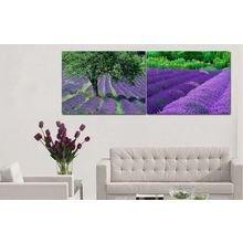 Модульная картина на холсте: Лиловые луга