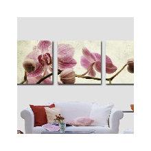 Модульная картина на холсте: Розовые орхидеи