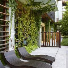 Фотография: Терраса в стиле Современный, Балкон, Флористика, Стиль жизни – фото на InMyRoom.ru