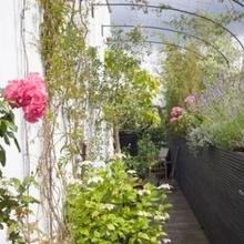 Фотография: Балкон в стиле Эко, Квартира, Терраса, Дома и квартиры, Лондон, Пентхаус – фото на InMyRoom.ru