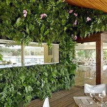 Фотография: Декор в стиле Эко, Дома и квартиры, Городские места, Отель, Бразилия – фото на InMyRoom.ru