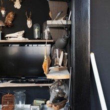 Фото из портфолио Противоречивый интерьер : черные стены, скелеты, чучела животных и впечатляющая коллекция ножей – фотографии дизайна интерьеров на INMYROOM