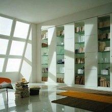 Фотография:  в стиле Современный, Декор интерьера, Декор дома, Библиотека – фото на InMyRoom.ru