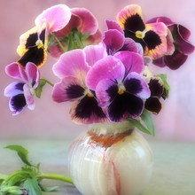 Фотография: Флористика в стиле , Декор интерьера, Дом, Стиль жизни, Цветы – фото на InMyRoom.ru