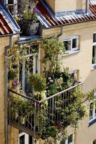 Фотография: Прихожая в стиле Скандинавский, Балкон, Квартира, Аксессуары, Мебель и свет, Терраса, Советы, Ремонт на практике, бюджетное обновление балкона, экономичный ремонт на балконе – фото на InMyRoom.ru