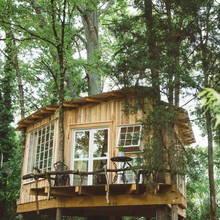 """Фото из портфолио  """"Волшебный"""" домик на дереве – фотографии дизайна интерьеров на INMYROOM"""