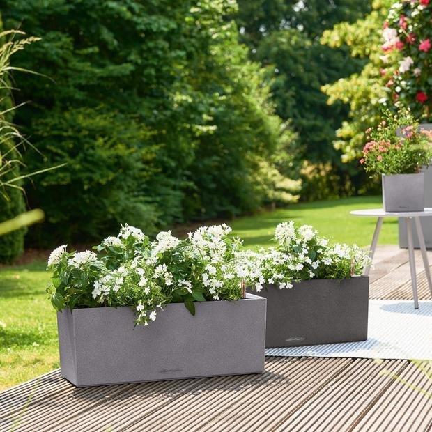 Фото из портфолио  Кашпо для растений Lechuza (Лечуза)  BALCONERA STONE – фотографии дизайна интерьеров на INMYROOM