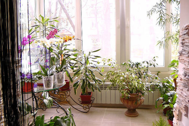 Фотография: Прочее в стиле , Декор интерьера, Comptoir de Famille, Country Corner, Декор дома, Интерьерная Лавка, Вазы – фото на InMyRoom.ru