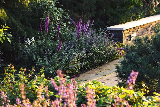 Фотография: Ландшафт в стиле , Советы, Derevo Park, как выбрать растения для сада, осенние посадки, огород – фото на INMYROOM