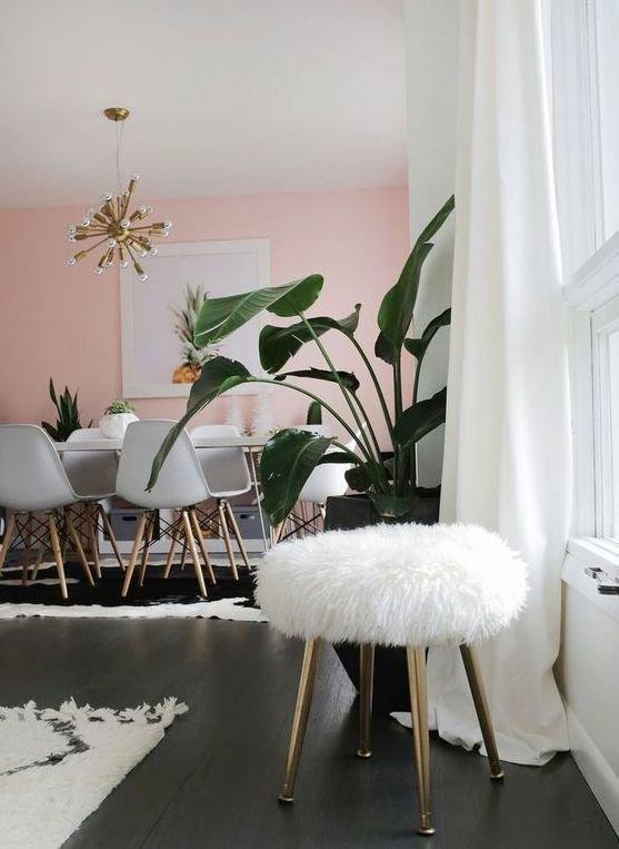 Фотография: Кухня и столовая в стиле Скандинавский, Декор интерьера, Зеленый, растения в горшках в интерьере, комнатные растения для ванной комнаты – фото на INMYROOM