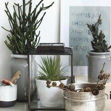 Фото из портфолио Lookbook осень-зима 2013/14 от House Doctor  – фотографии дизайна интерьеров на INMYROOM