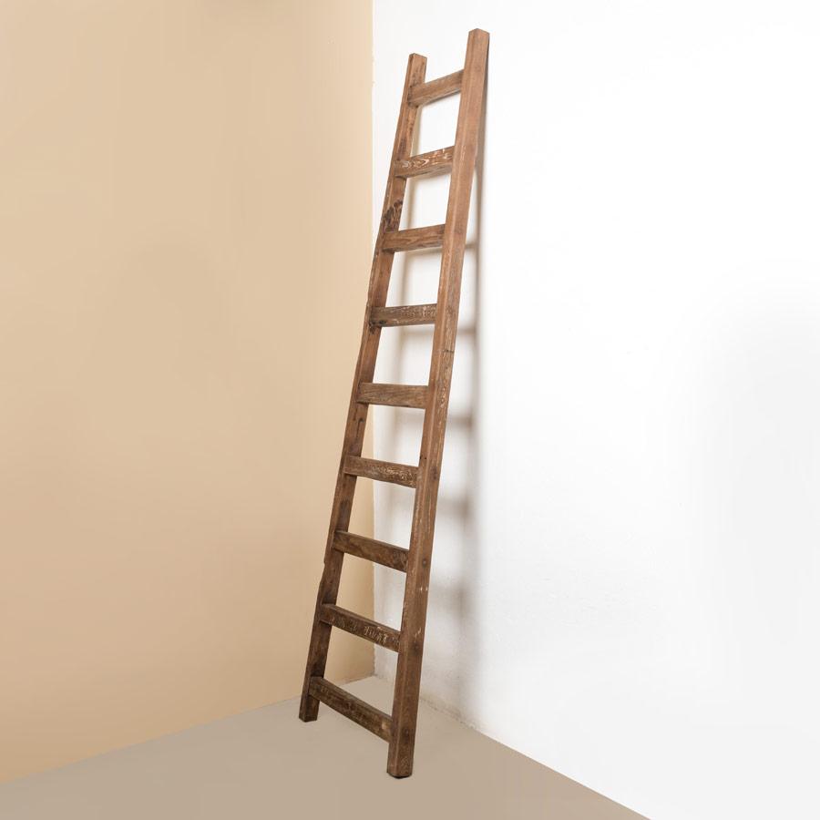 Вешалка d-Bodhi Ladder 195