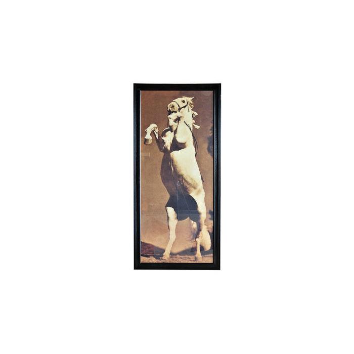 Картина Лошадь Стенли