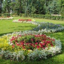 Фото из портфолио Наш ландшафтный след на Земле. – фотографии дизайна интерьеров на InMyRoom.ru