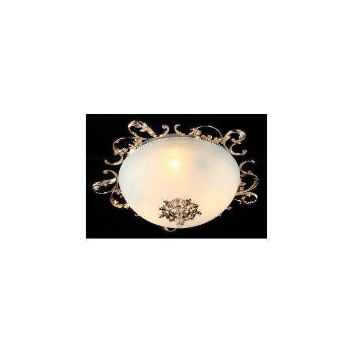 Потолочный светильник Maytoni Speria