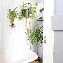 Фотография: Ванная в стиле Кантри, Декор интерьера, Декор, Советы, фэншуй – фото на InMyRoom.ru