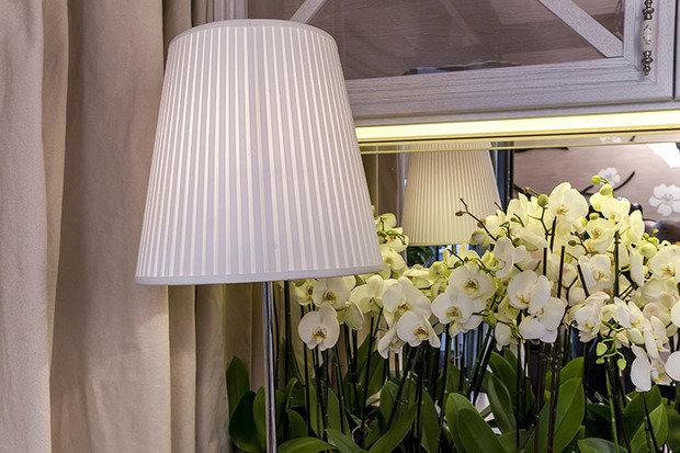 Фотография: Флористика в стиле , Гостиная, Декор интерьера, Интерьер комнат – фото на InMyRoom.ru