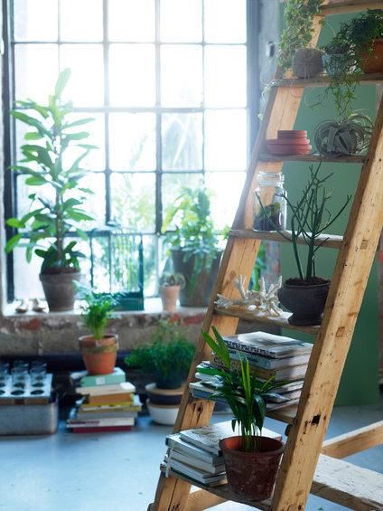 Фотография: Декор в стиле Эко, Флористика, Стиль жизни, Советы, Цветы – фото на INMYROOM
