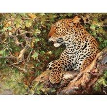 "Стильная картина на холсте ""Гордый леопард"""