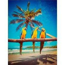 "Картина на холсте ""Три попугая"""
