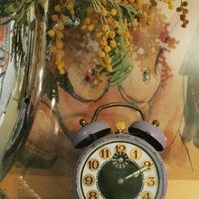 Фото из портфолио Страсть к собирательству. Будильники. – фотографии дизайна интерьеров на InMyRoom.ru