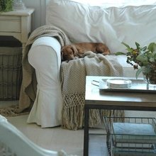 Фото из портфолио Dogs – фотографии дизайна интерьеров на InMyRoom.ru