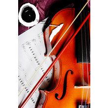 Декоративная картина: Душа скрипки
