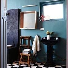 Фото из портфолио  Нестандартные цвета для ванной – фотографии дизайна интерьеров на InMyRoom.ru