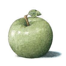Картина (репродукция, постер): Apple No. 3