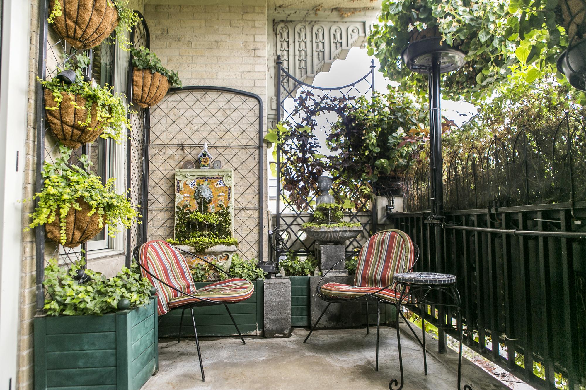 Растения для балконов