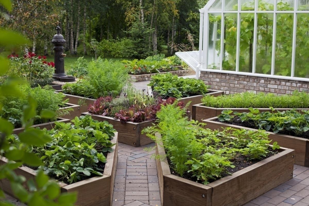 Это красиво: 30+ лучших идей для огородных грядок