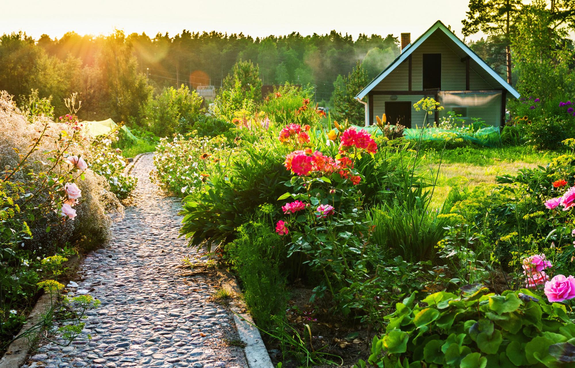 Как быстро и недорого сделать садовые дорожки: секреты профи