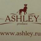 ASHLEY-group
