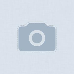 dmitry-rozov-884314